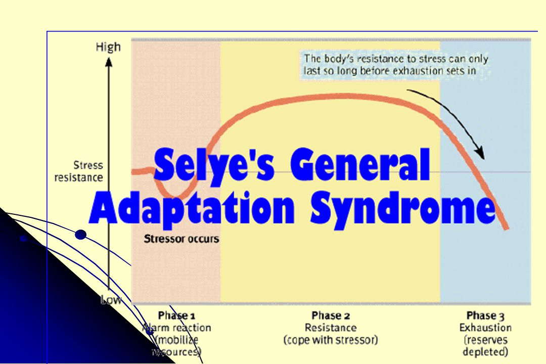 General Adaptation Syndrome 1.