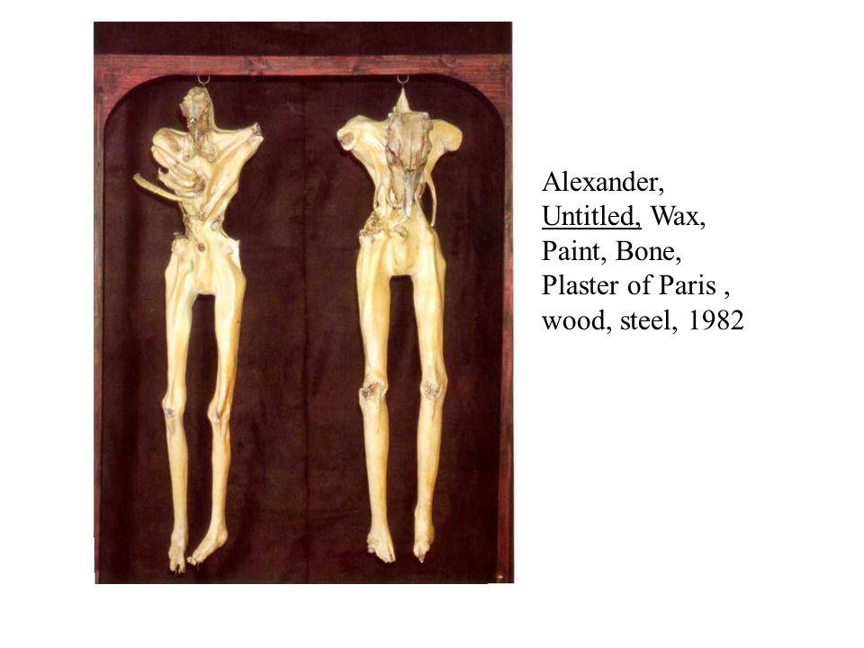 Alexander, Untitled, Wax, Paint, Bone, Plaster of Paris, wood, steel, 1982