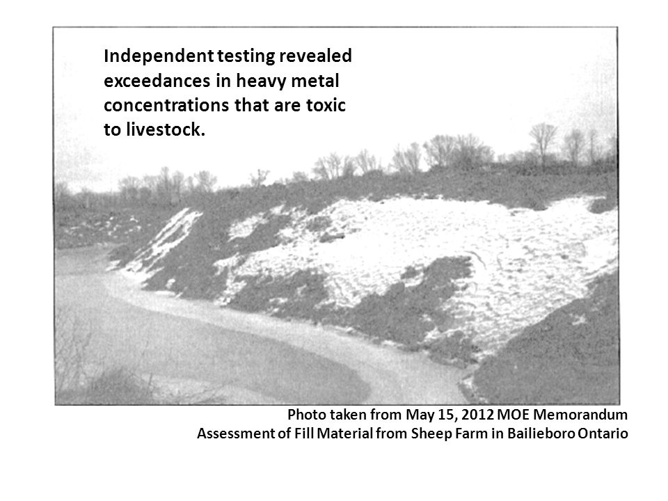 Photo taken from May 15, 2012 MOE Memorandum Assessment of Fill Material from Sheep Farm in Bailieboro Ontario Independent testing revealed exceedance
