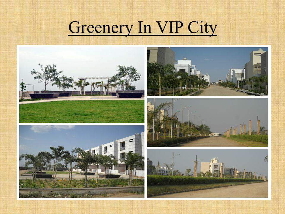 Greenery In VIP City