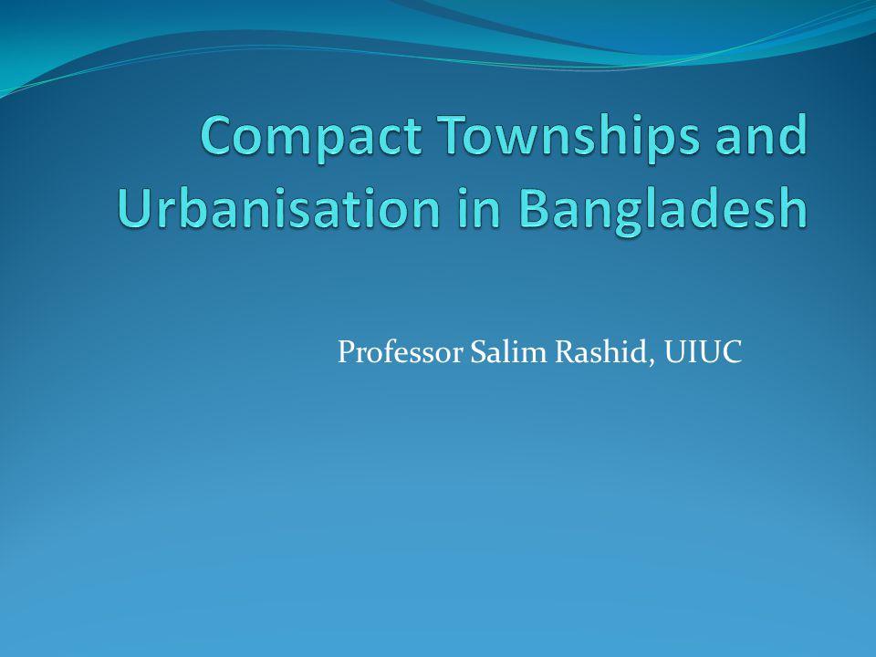 Professor Salim Rashid, UIUC