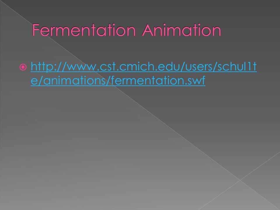  http://www.cst.cmich.edu/users/schul1t e/animations/fermentation.swf http://www.cst.cmich.edu/users/schul1t e/animations/fermentation.swf