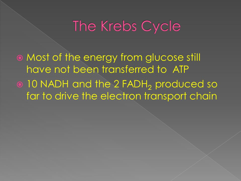  Most of the energy from glucose still have not been transferred to ATP  10 NADH and the 2 FADH 2 produced so far to drive the electron transport chain