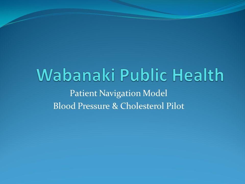 Patient Navigation Model Blood Pressure & Cholesterol Pilot