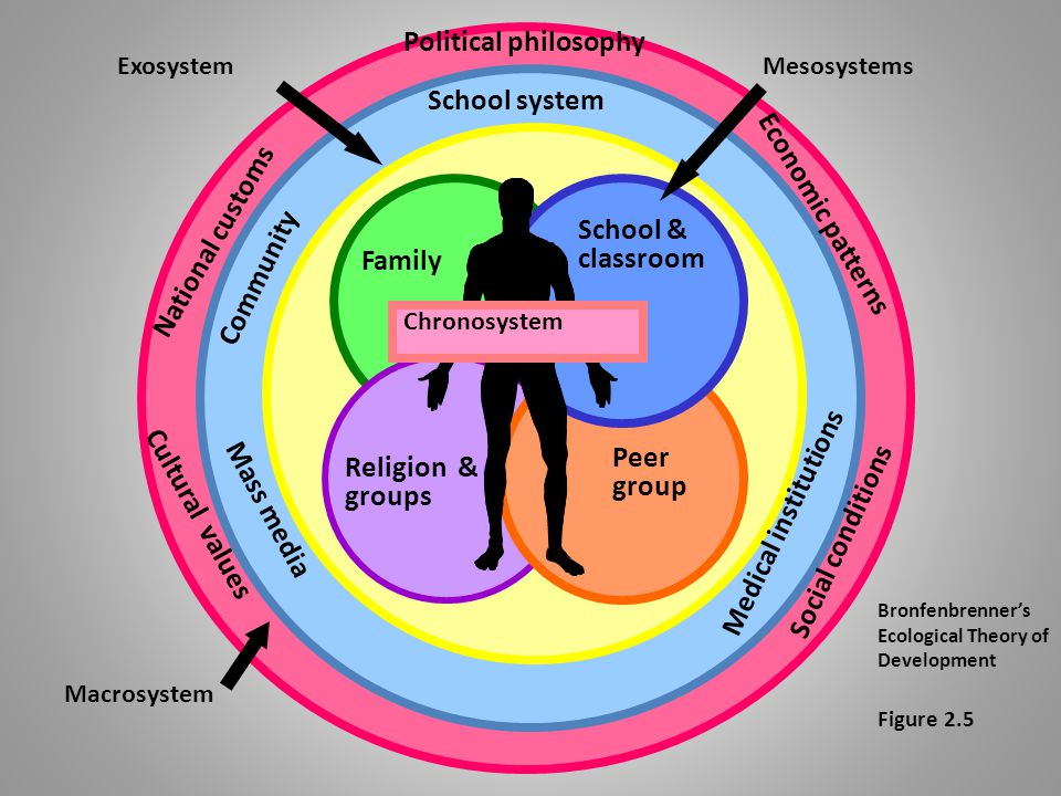 Urie Bronfenbrenner's ecological theory: – Environmental factors influence development – 5 environmental systems affect life-span development Eclectic