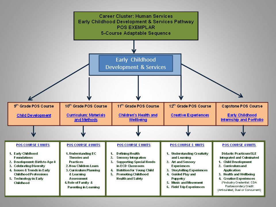 *Source: States Career Clusters Initiative, 2005 New Jersey CTEP Grant Human Services Career Focuses on Four Pathways CTEP Grant is supported by funds from the Federal Carl D.