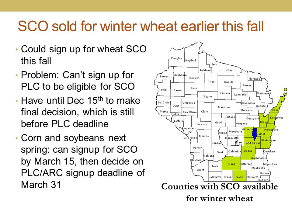 SCO sold for winter wheat earlier this fall Could sign up for wheat SCO this fall Problem: Can't sign up for PLC to be eligible for SCO Have until Dec