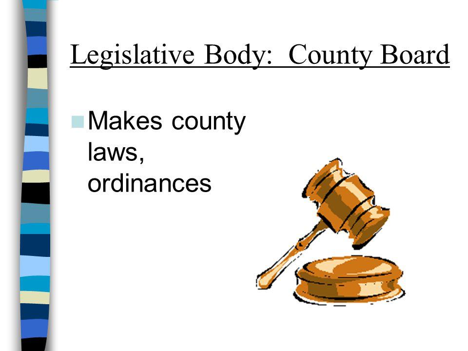 Legislative Body: County Board Makes county laws, ordinances