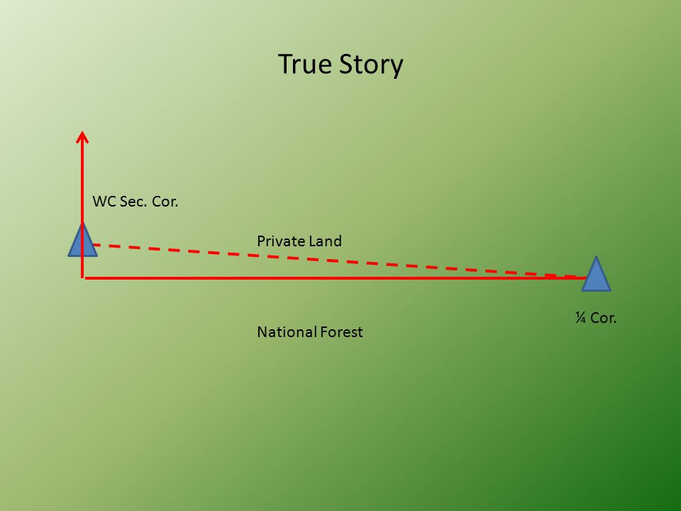 True Story WC Sec. Cor. ¼ Cor. Private Land National Forest
