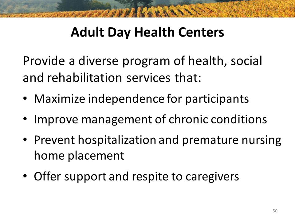 Adult Day Health Centers Provide a diverse program of health, social and rehabilitation services that: Maximize independence for participants Improve