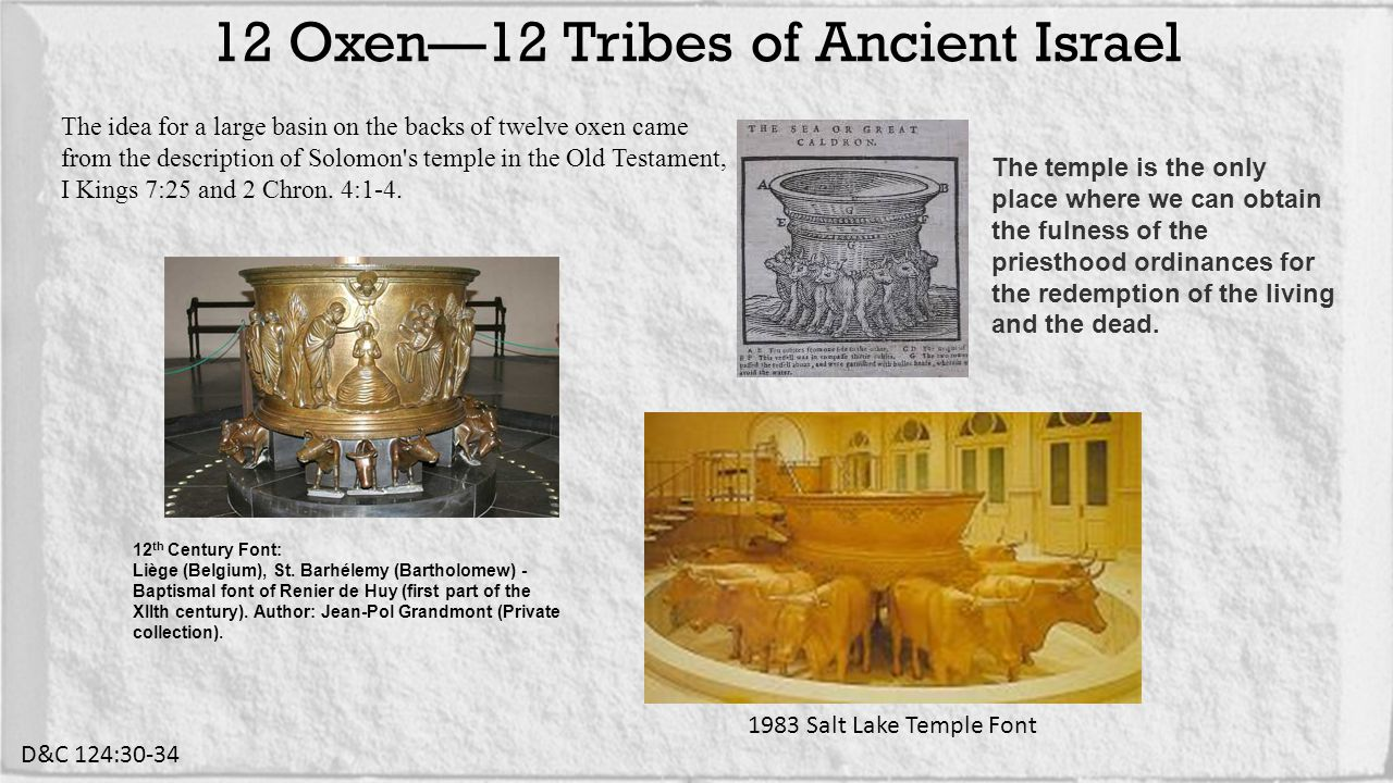 12 Oxen—12 Tribes of Ancient Israel D&C 124:30-34 1983 Salt Lake Temple Font The idea for a large basin on the backs of twelve oxen came from the description of Solomon s temple in the Old Testament, I Kings 7:25 and 2 Chron.