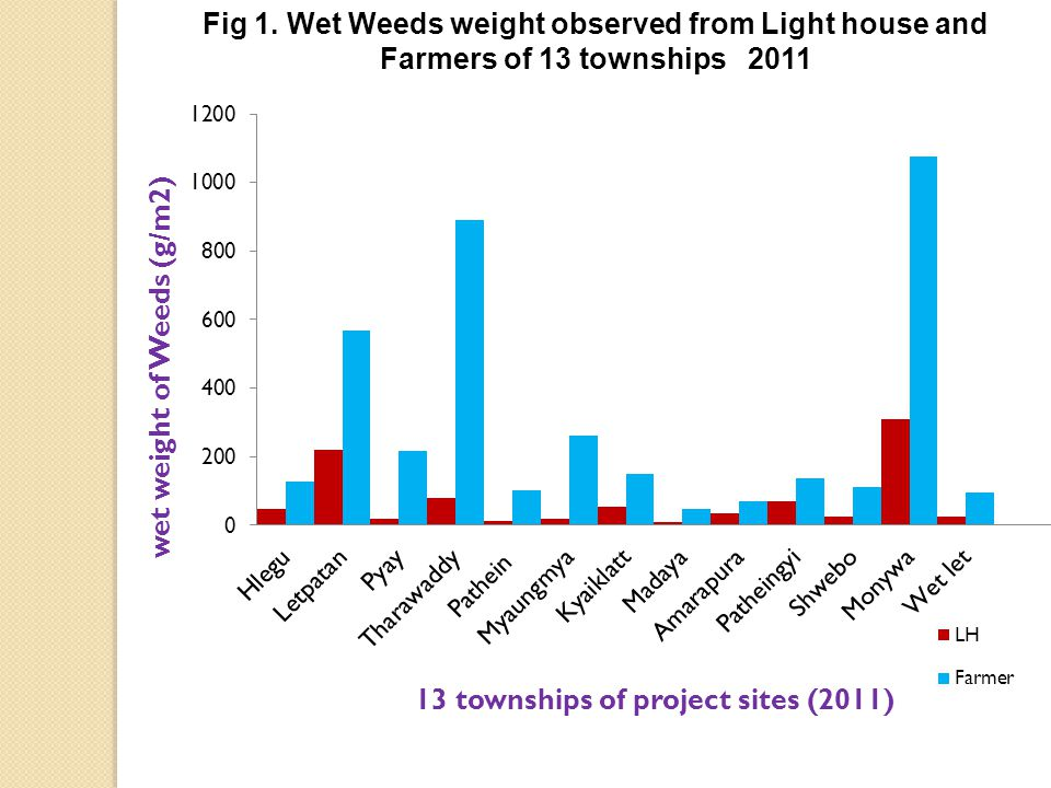 Fig 1. Wet Weeds weight observed from Light house and Farmers of 13 townships 2011