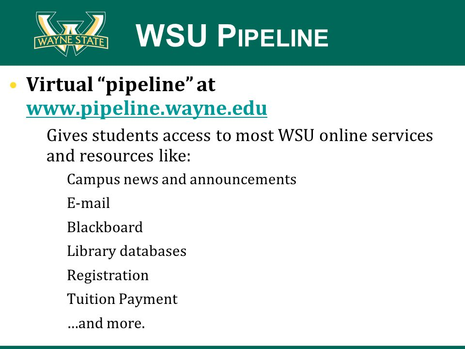 WSU P IPELINE Virtual pipeline at www.pipeline.wayne.eduipne.wayne.edu www.pipeline.wayne.edu Gives students access to most WSU online services and resources like: Campus news and announcements E-mail Blackboard Library databases Registration Tuition Payment …and more.
