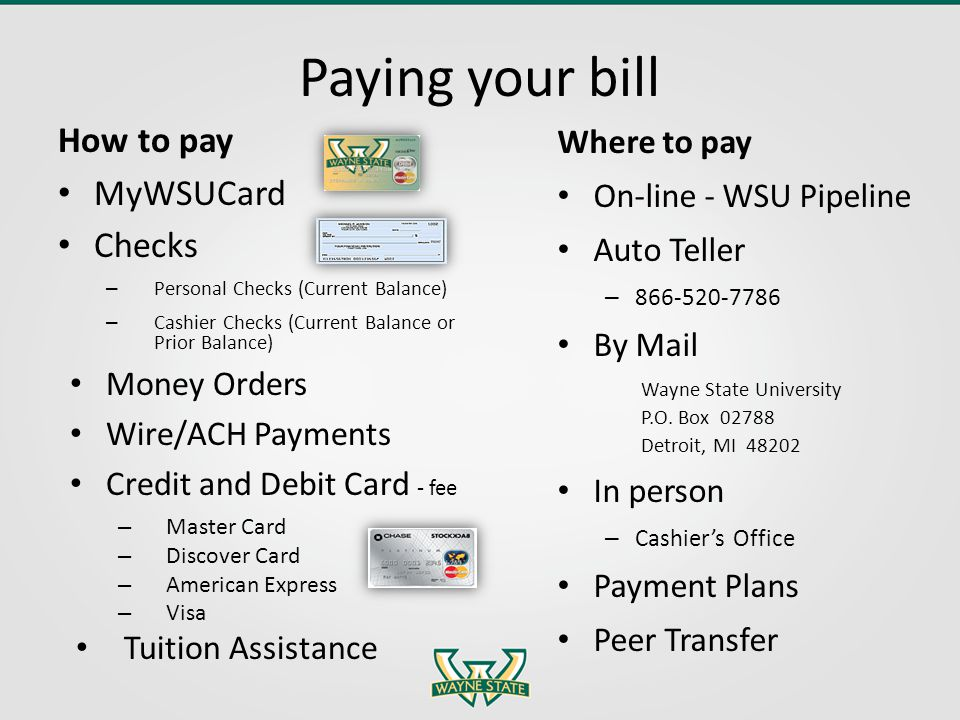 Paying your bill How to pay MyWSUCard Checks – Personal Checks (Current Balance) – Cashier Checks (Current Balance or Prior Balance) Money Orders Wire/ACH Payments Credit and Debit Card - fee – Master Card – Discover Card – American Express – Visa Tuition Assistance Where to pay On-line - WSU Pipeline Auto Teller – 866-520-7786 By Mail Wayne State University P.O.