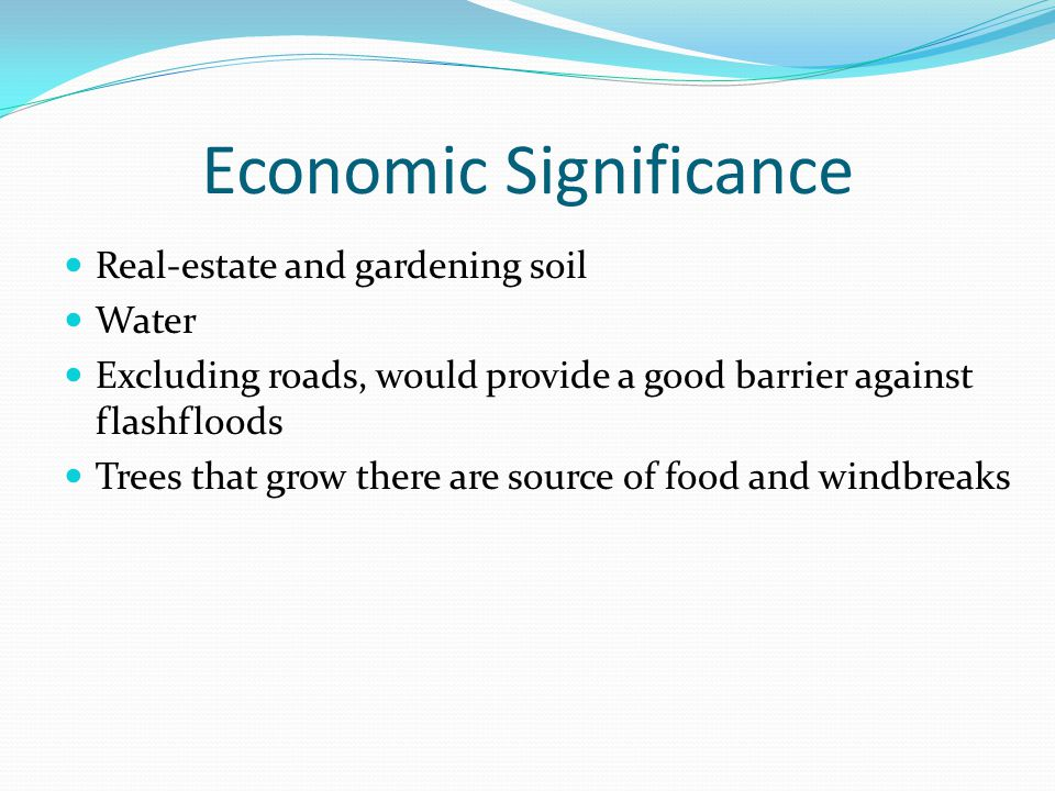 Economic Significance Real-estate and gardening soil Water Excluding roads, would provide a good barrier against flashfloods Trees that grow there are source of food and windbreaks