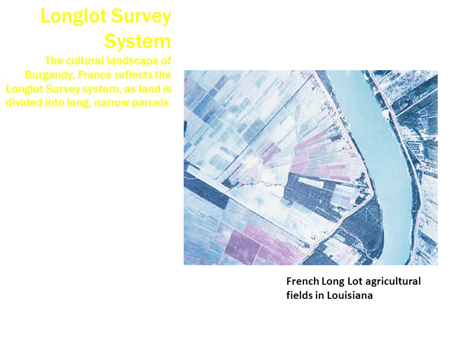 Longlot Survey System The cultural landscape of Burgandy, France reflects the Longlot Survey system, as land is divided into long, narrow parcels.