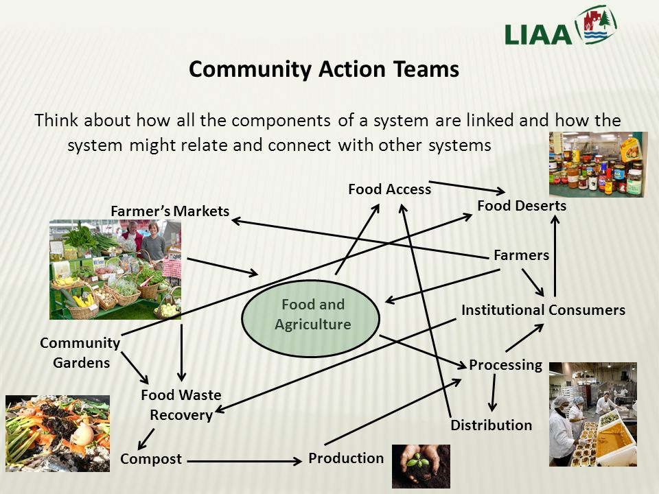 Think about how all the components of a system are linked and how the system might relate and connect with other systems Community Action Teams Food and Agriculture Compost Processing Distribution Farmers Institutional Consumers Production Community Gardens Farmer's Markets Food Waste Recovery Food Access Food Deserts