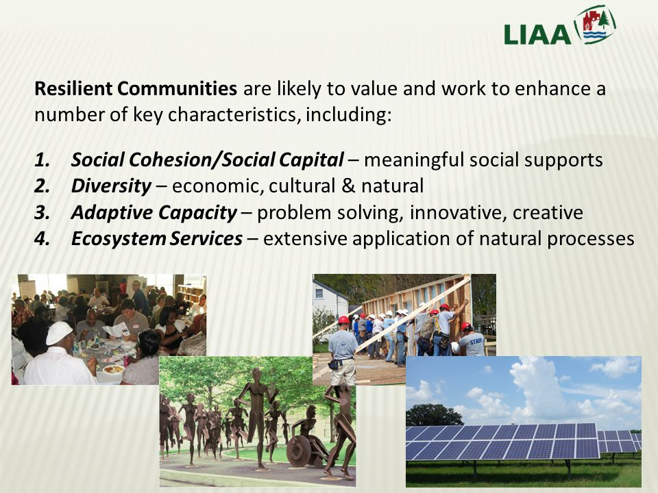 Resilient Communities are likely to value and work to enhance a number of key characteristics, including: 1.Social Cohesion/Social Capital – meaningful social supports 2.Diversity – economic, cultural & natural 3.Adaptive Capacity – problem solving, innovative, creative 4.Ecosystem Services – extensive application of natural processes