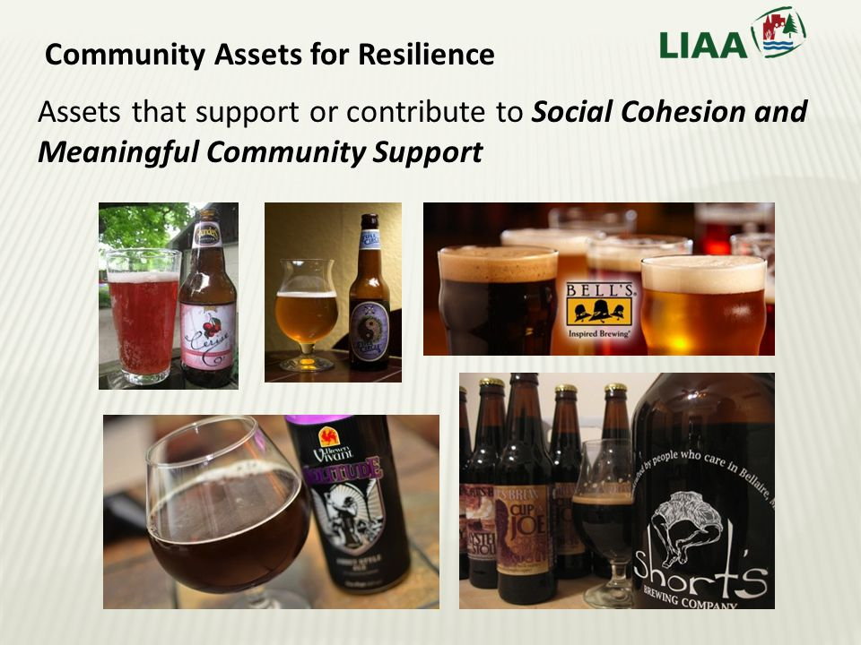 Community Assets for Resilience Assets that support or contribute to Social Cohesion and Meaningful Community Support