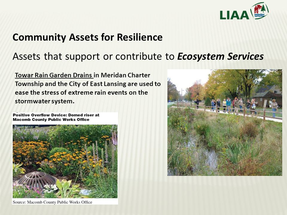 Community Assets for Resilience Assets that support or contribute to Ecosystem Services Towar Rain Garden Drains in Meridan Charter Township and the City of East Lansing are used to ease the stress of extreme rain events on the stormwater system.