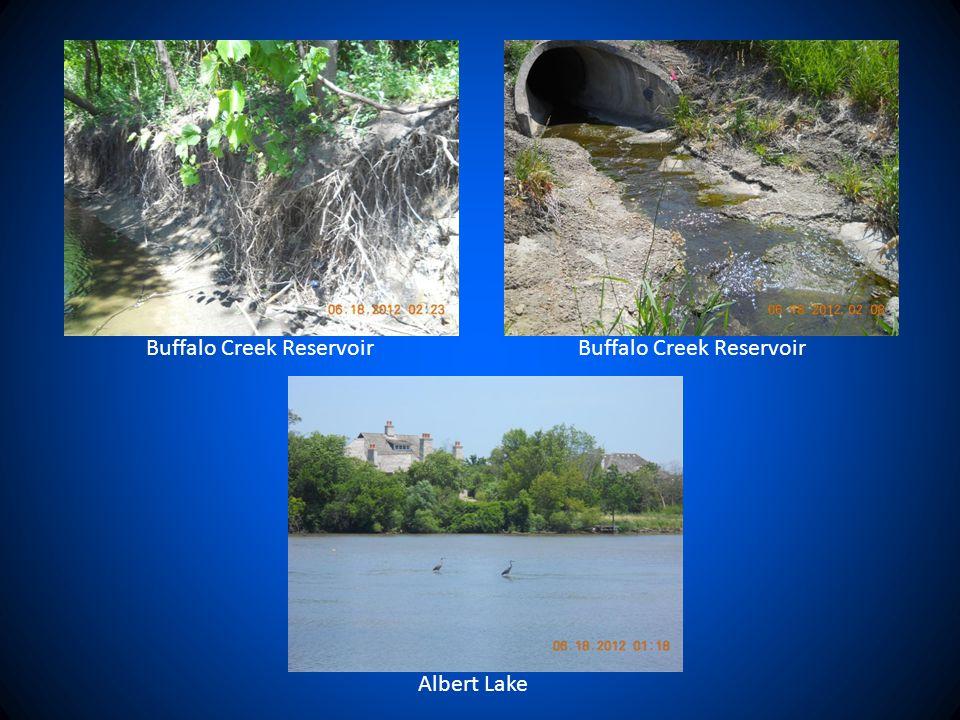 Albert Lake Buffalo Creek Reservoir