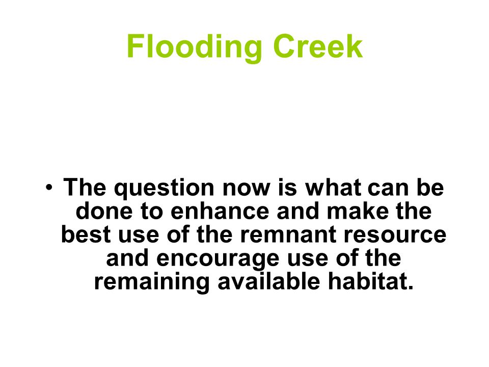 Flooding Creek The question now is what can be done to enhance and make the best use of the remnant resource and encourage use of the remaining available habitat.