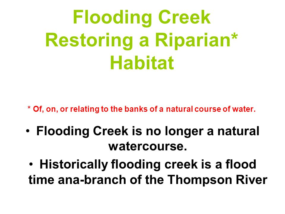 Flooding Creek Restoring a Riparian* Habitat * Of, on, or relating to the banks of a natural course of water.