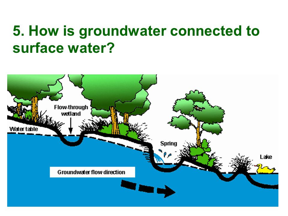 5. How is groundwater connected to surface water