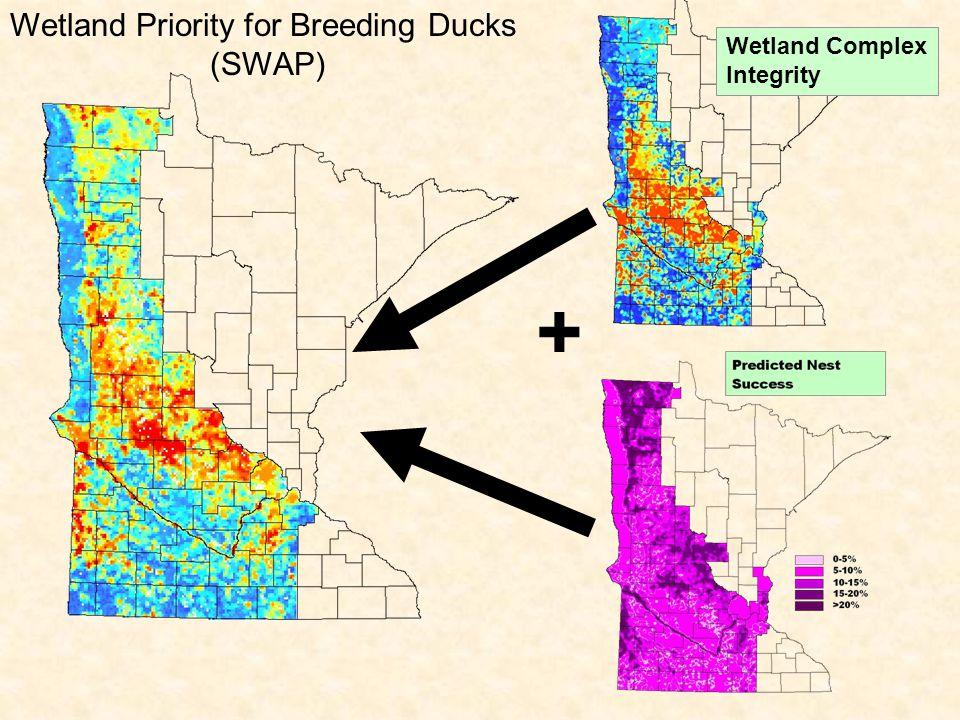 Wetland Priority for Breeding Ducks (SWAP) + Wetland Complex Integrity