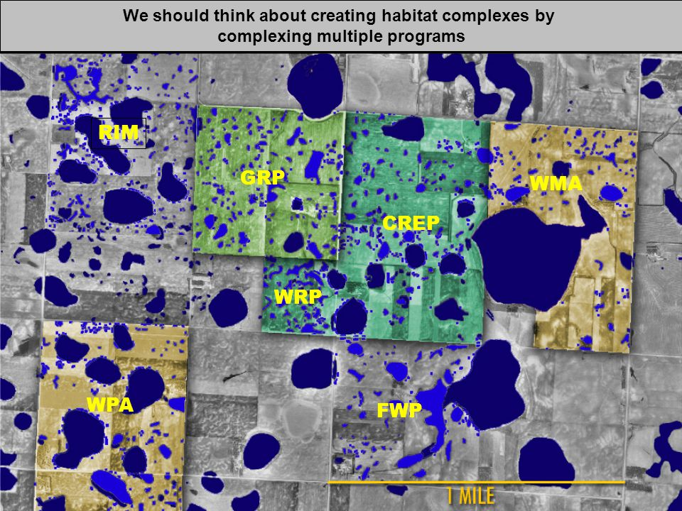 RIM GRP CREP WRP WPA FWP WMA We should think about creating habitat complexes by complexing multiple programs