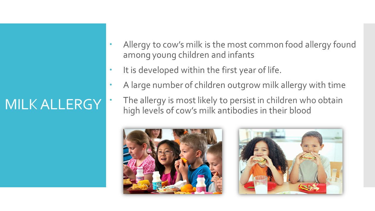 MILK ALLERGY  Allergy to cow's milk is the most common food allergy found among young children and infants  It is developed within the first year of life.