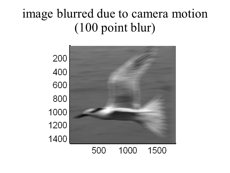 image blurred due to camera motion (100 point blur)