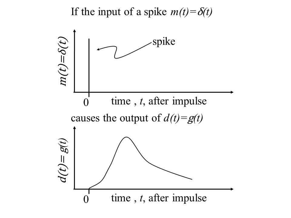 time, t, after impulse d(t)= g (t) 0 time, t, after impulse m(t)=δ(t) 0 If the input of a spike m(t)= δ (t) spike causes the output of d(t)= g (t)
