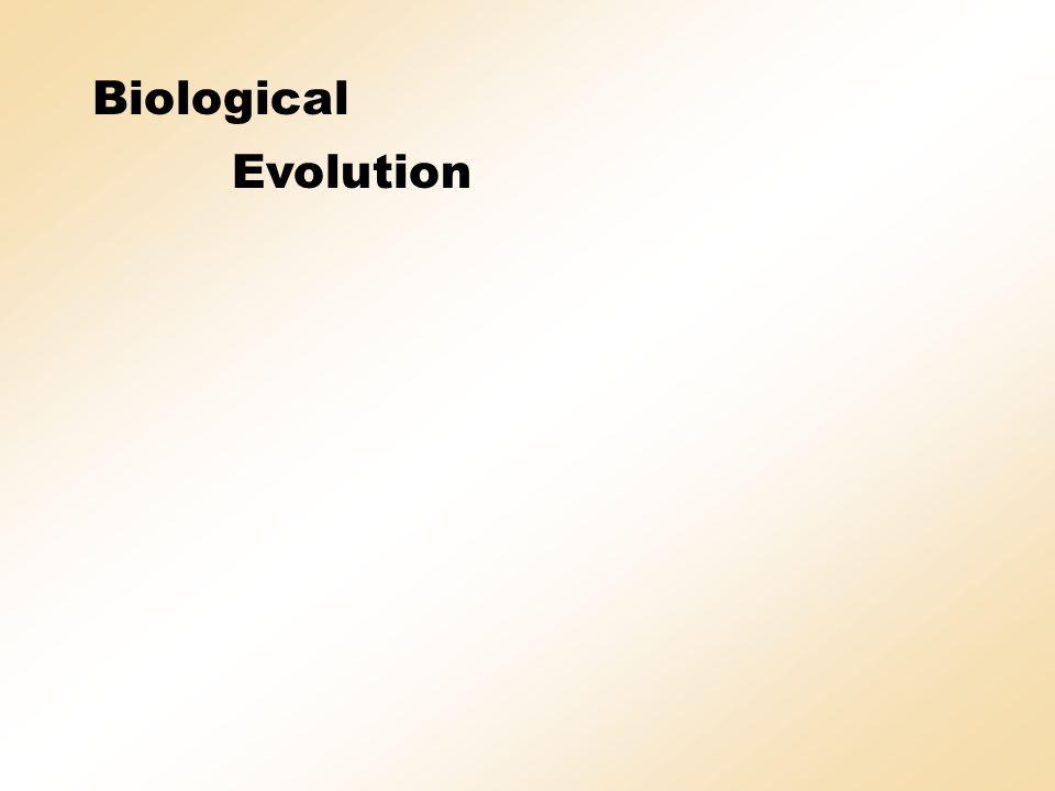 Evolution-strategic development of a framework construction