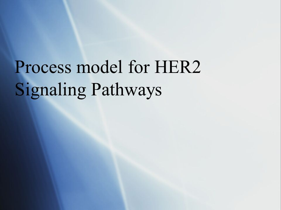 Process model for HER2 Signaling Pathways