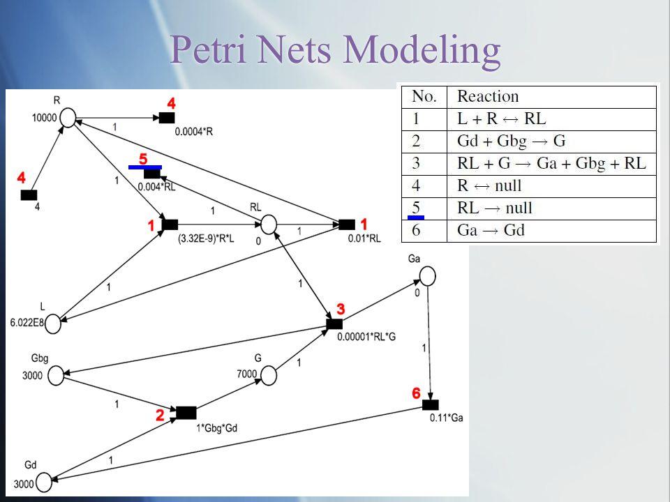 NJPLS2010@Stevens Petri Nets Modeling
