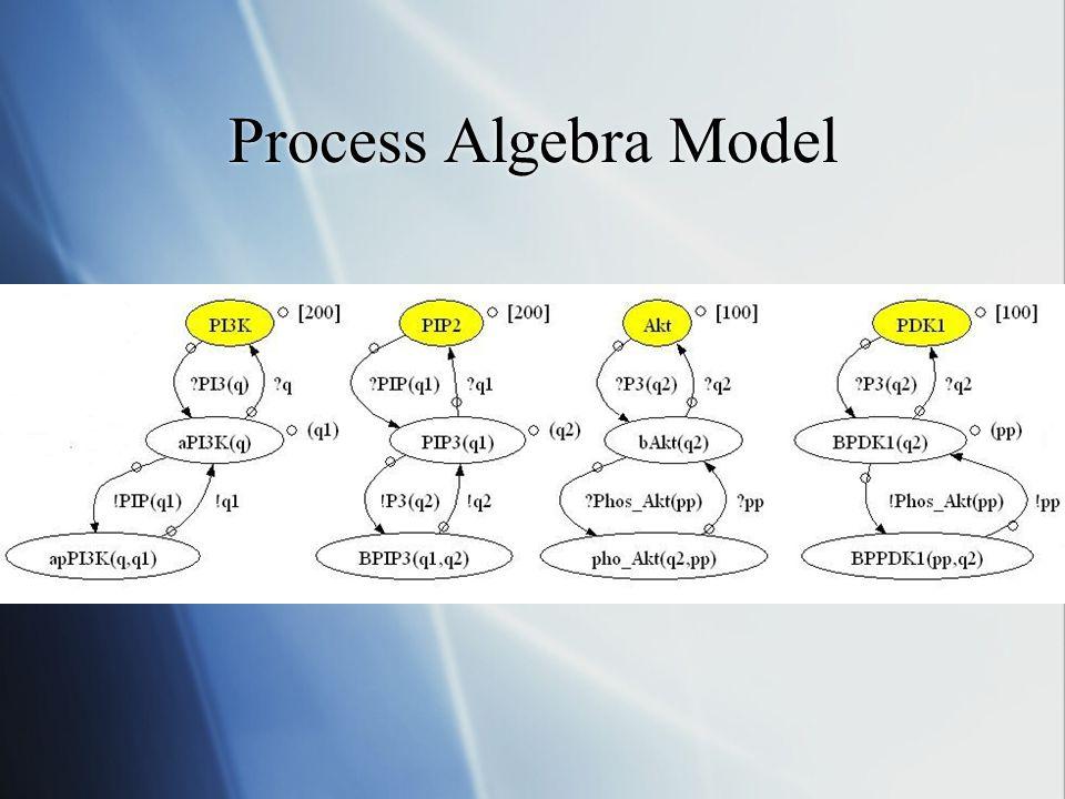 Process Algebra Model