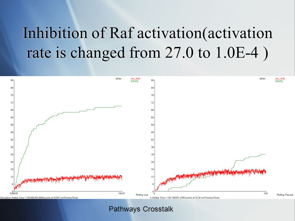 Inhibition of Raf activation(activation rate is changed from 27.0 to 1.0E-4 ) Pathways Crosstalk