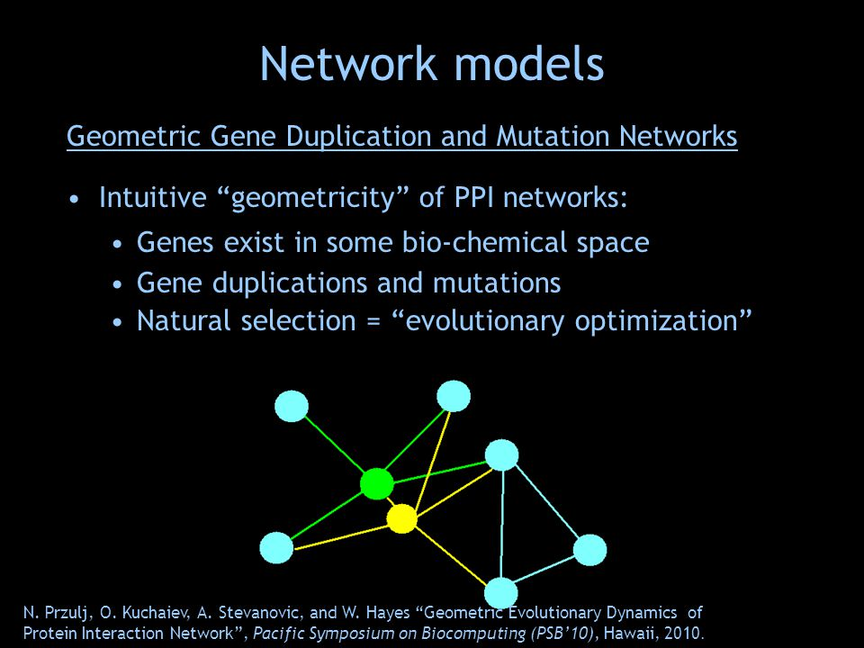 Geometric Gene Duplication and Mutation Networks Intuitive geometricity of PPI networks: Genes exist in some bio-chemical space Gene duplications and mutations Natural selection = evolutionary optimization N.