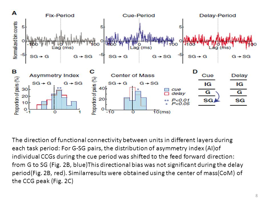 The direction of functional connectivity between units in different layers during each task period: For G-SG pairs, the distribution of asymmetry inde