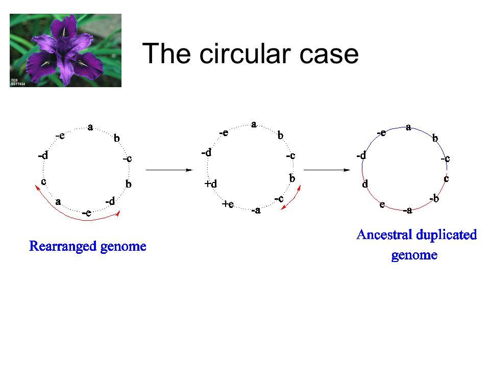 The circular case