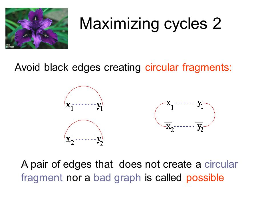 Maximizing cycles 2 Avoid black edges creating circular fragments: A pair of edges that does not create a circular fragment nor a bad graph is called possible