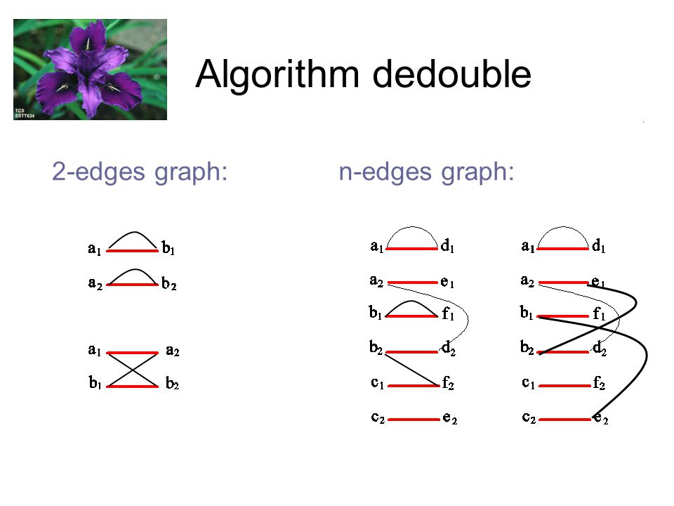 Algorithm dedouble 2-edges graph:n-edges graph: