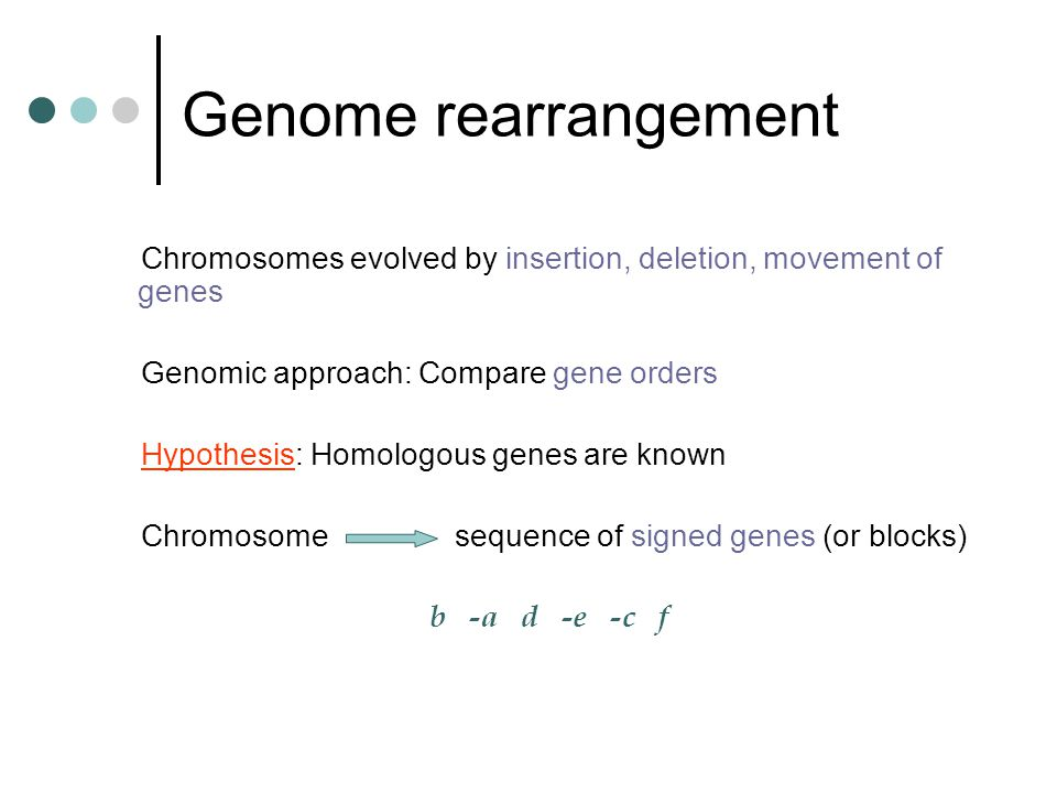 Genome rearrangement Chromosomes evolved by insertion, deletion, movement of genes Genomic approach: Compare gene orders Hypothesis: Homologous genes are known Chromosome sequence of signed genes (or blocks) b -a d -e -c f