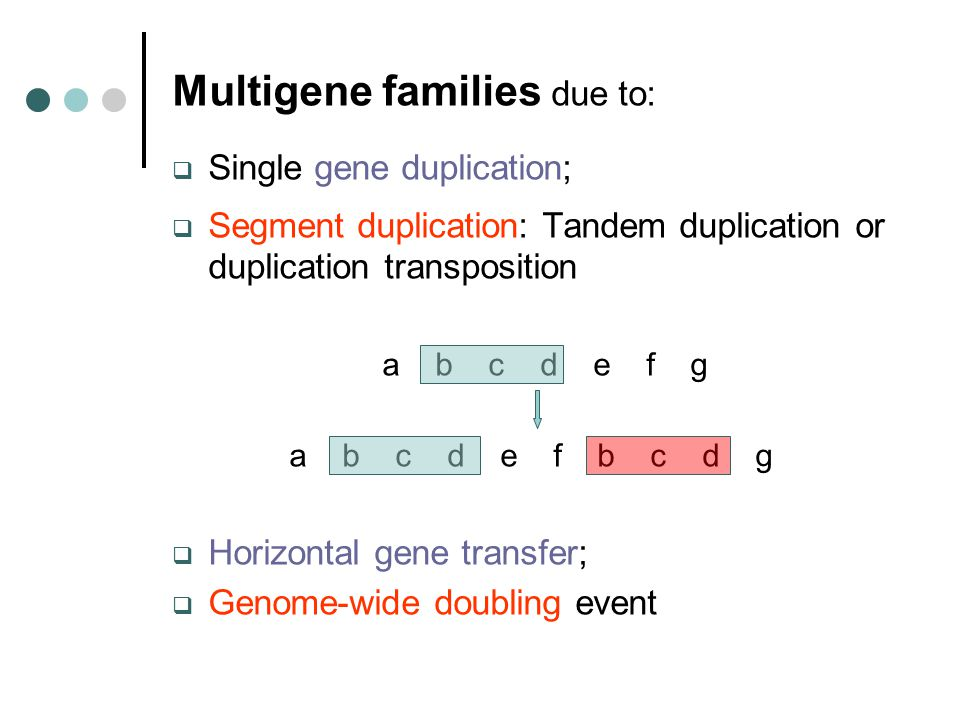 Multigene families due to:  Single gene duplication;  Segment duplication: Tandem duplication or duplication transposition a b c d e f g a b c d e f b c d g  Horizontal gene transfer;  Genome-wide doubling event