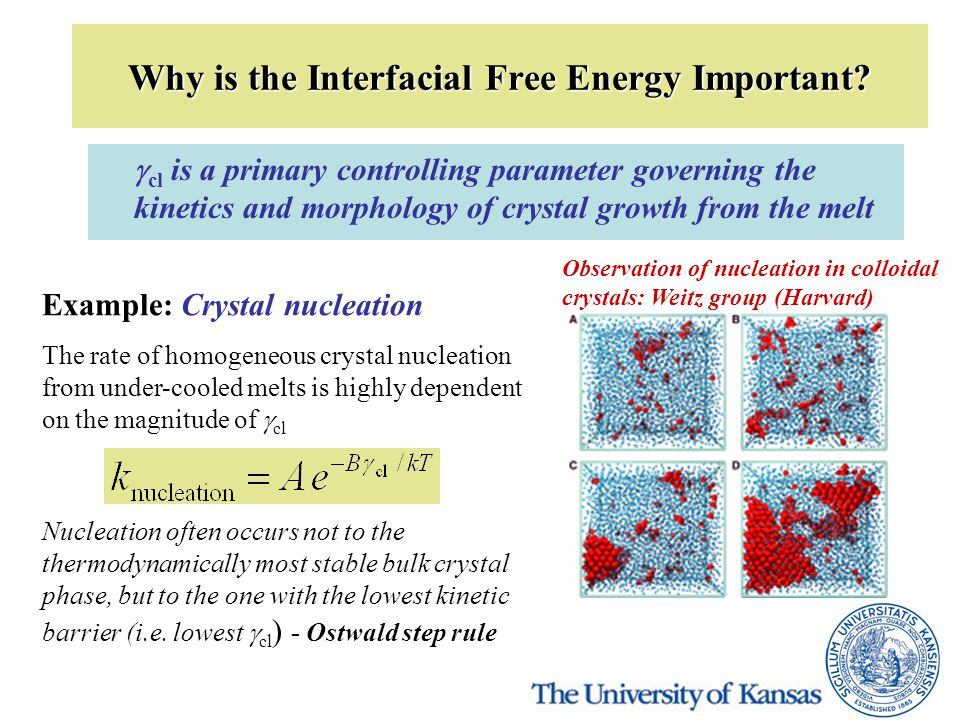 Why is the Interfacial Free Energy Important?  cl is a primary controlling parameter governing the kinetics and morphology of crystal growth from the