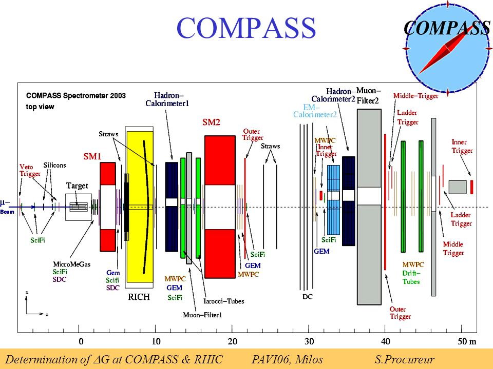 COMPASS Determination of  G at COMPASS & RHICPAVI06, Milos S.Procureur