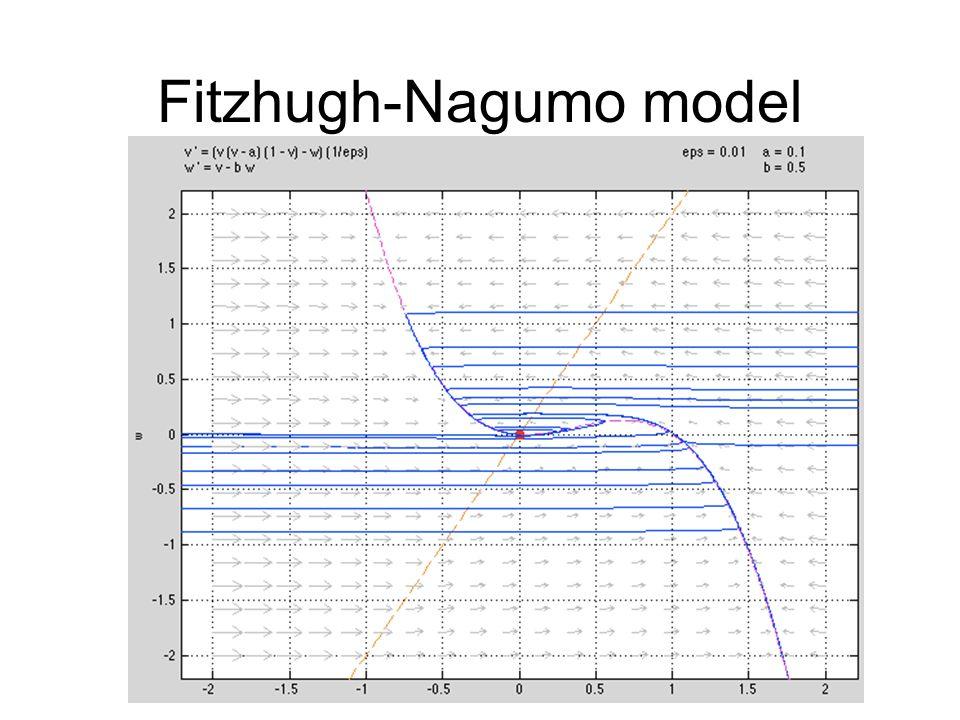 Fitzhugh-Nagumo model