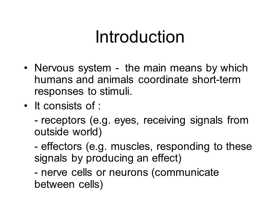 Introduction Nervous system - the main means by which humans and animals coordinate short-term responses to stimuli.