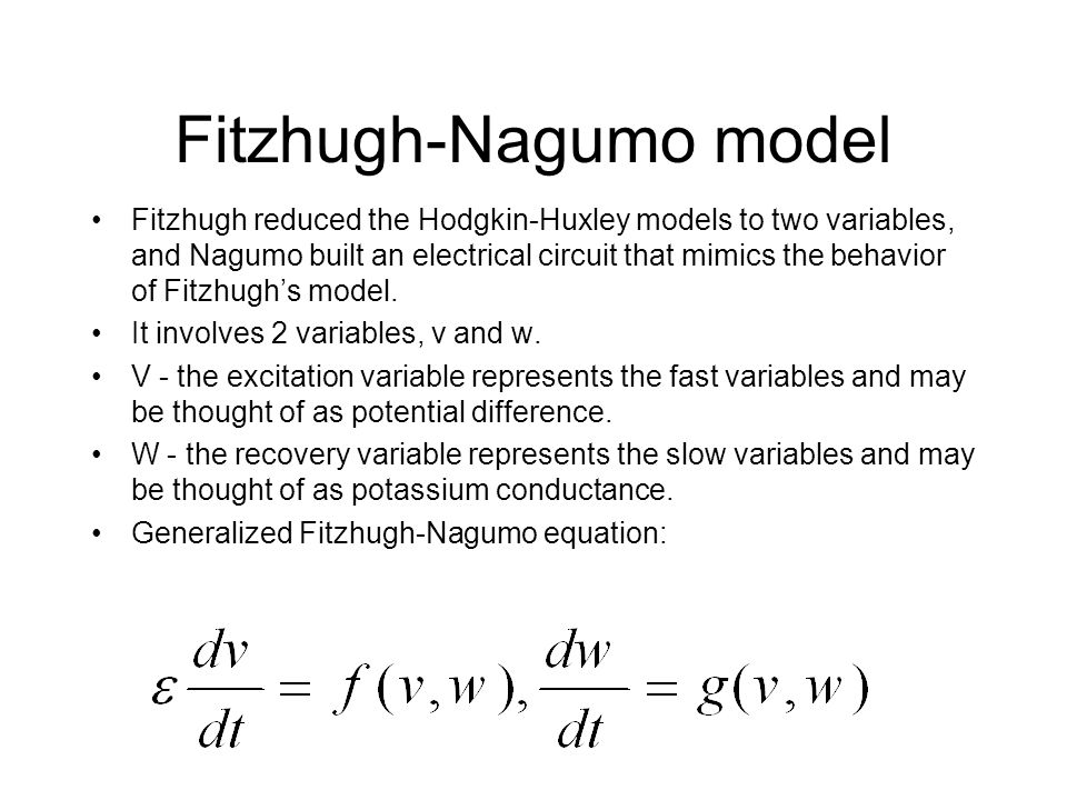 Fitzhugh-Nagumo model Fitzhugh reduced the Hodgkin-Huxley models to two variables, and Nagumo built an electrical circuit that mimics the behavior of Fitzhugh's model.